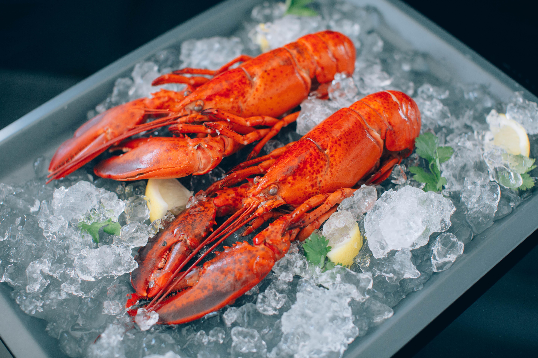 Boston Lobster | Lam Kee Fisheries